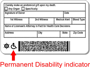Permanent Disability Indicator