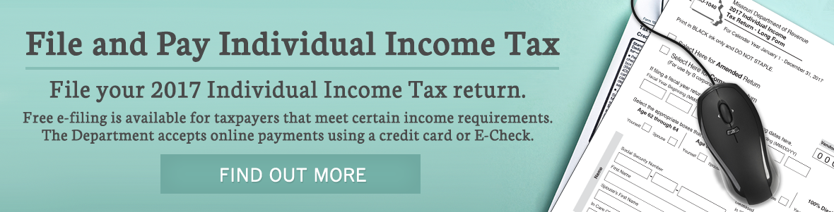 File and Pay your Individual Income Tax return.